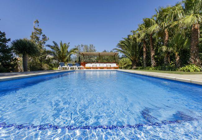 Villa in Sant Josep de Sa Talaia / San Jose - VILLA LA VILA, 6 pax